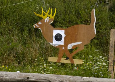 running deer 10